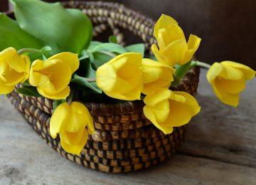 משלוחי פרחים בראשון לציון – לאיזה אירועים כדאי לשלוח פרחים?
